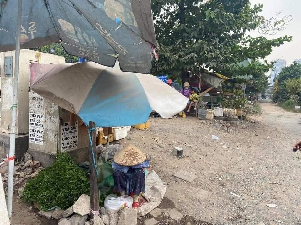Cụ bà ngủ gục bên bó rau những ngày cuối năm ở Sài Gòn: 'Cháu mua đi, 1 bó 5k, mua 4 bó bà khuyến mãi 1 bó' 0