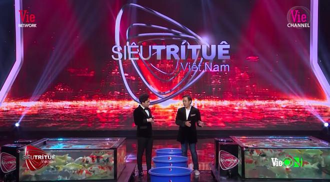 Sự xuất hiện của anh Thắng Ngô trên sân khấu Siêu trí tuệ Việt Nam.