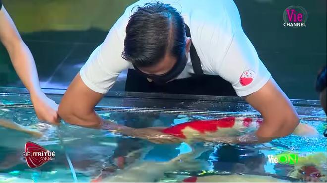 Anh Thắng Ngô tỉ mẩn sờ, ôm từng con cá Koi.
