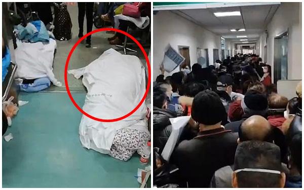 Các bệnh viện Vũ Hán đều trong tình trạng quá tải, thi thể nằm la liệt ở hành lang bệnh viện.