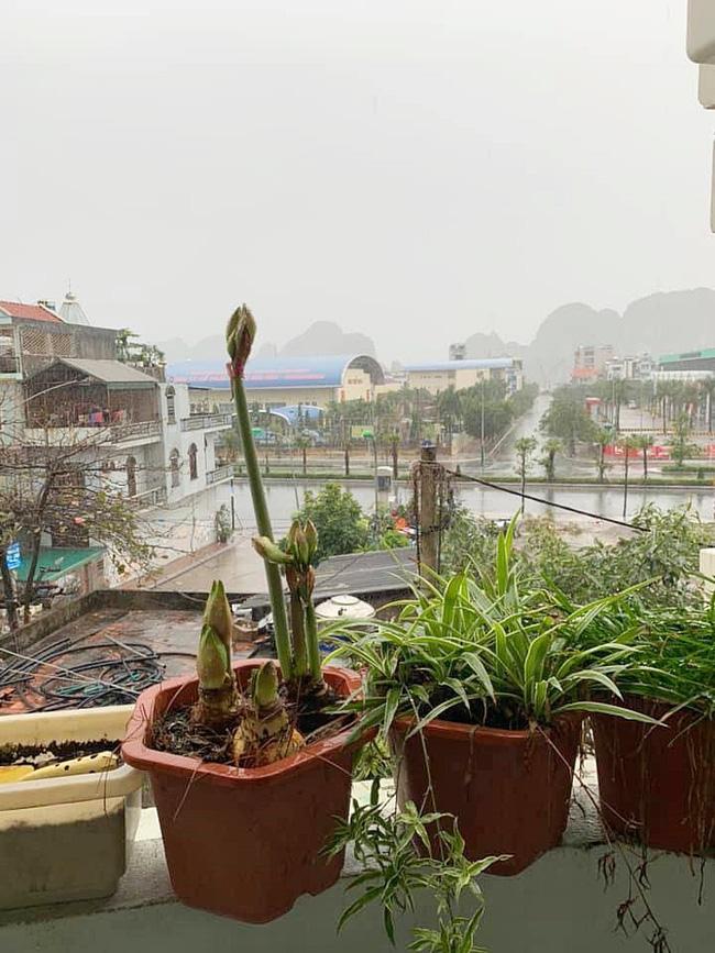 Tết đầu năm mưa gió bão bùng, dân tình dở khóc dở cười khoe ảnh du xuân đáng nhớ nhất trong lịch sử 25