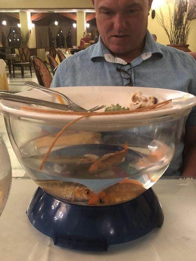 Loạt đồ ăn khi 'lên mâm' của các nhà hàng siêu trí tuệ khiến dân mạng cười ngất vì độ vô lý có '1-0-2' 5