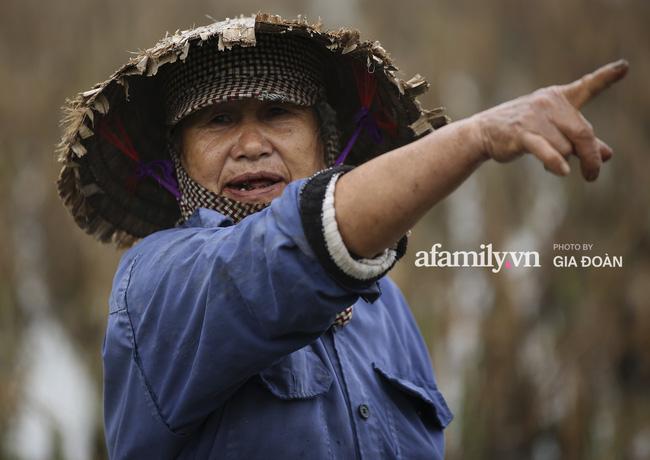 Khung cảnh tại quê hương Đỗ Thị Hà trong những ngày chờ đón Tân Hoa hậu về làng 9