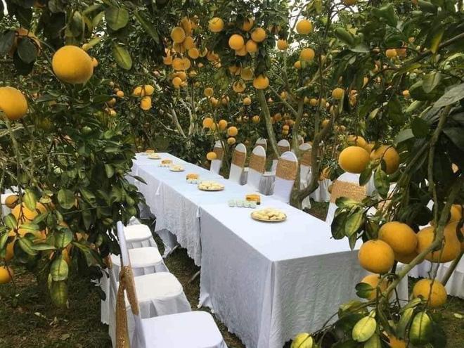 Hình ảnh tuyệt đẹp về nơi tổ chức tiệc cưới.