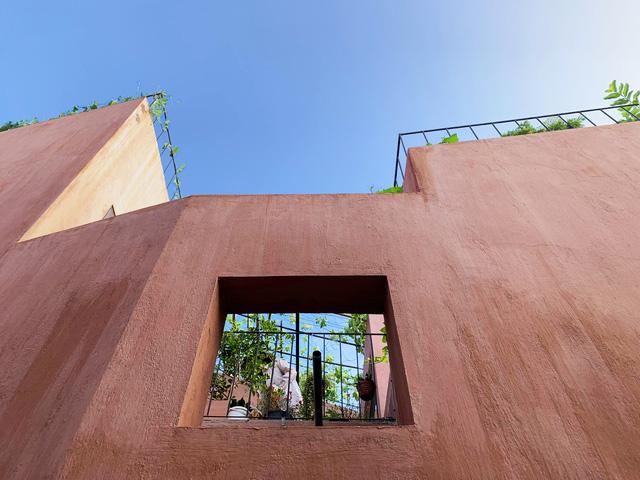 Vườn rau 7 bậc thang xanh tươi trên mái nhà của vợ chồng trung niên được các con xây tặng ở Quảng Ngãi 9