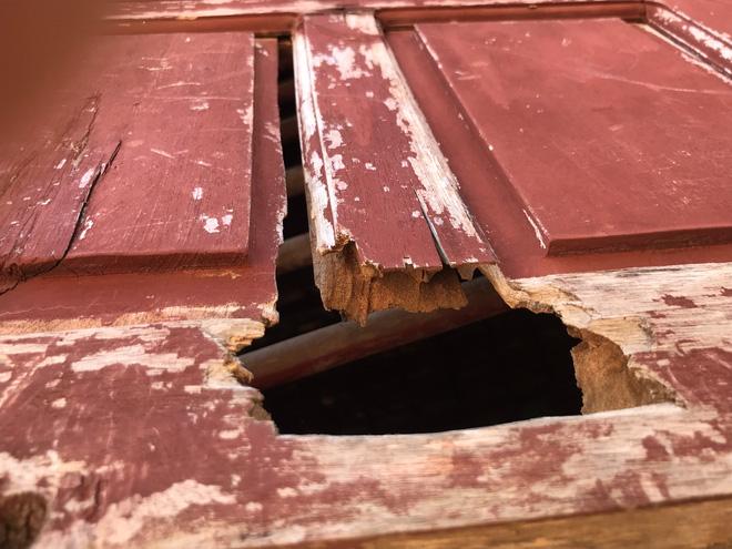 Cánh cửa phòng học đã bị mối mọt ăn thủng.