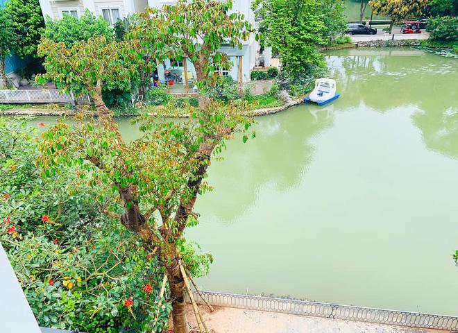 Cuộc sống nhung lụa, giàu sang của Lã Thanh Huyền ở tuổi 35 4