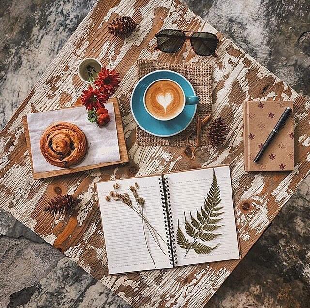 Vận mệnh của tuổi Mão trong năm Kỷ Hợi 2019: Hứa hẹn một năm 'bội thu' cả về tài chính lẫn sự nghiệp 1
