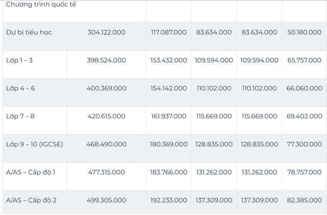 Sốc với mức học phí lên đến cả tỷ đồng/năm của các trường quốc tế ở TP.HCM 7