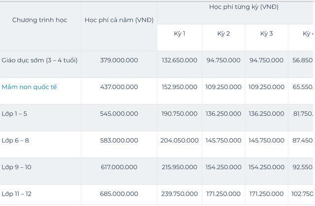Sốc với mức học phí lên đến cả tỷ đồng/năm của các trường quốc tế ở TP.HCM 5