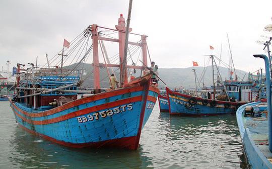 Tàu thuyền neo đậu tại cảng cá Quy Nhơn