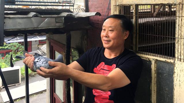 Người giàu có sẵn sàng chi mạnh để sở hữu những chú chim bồ câu có danh tiếng.