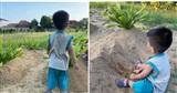 Hình ảnh cậu bé 2 tuổi chơi trên mộ bố mẹ và liên tục gọi 'Mẹ ơi' lấy đi nước mắt hàng nghìn người