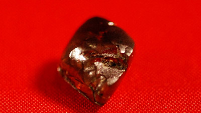 Đang tản bộ, nhặt được kim cương nâu lớn nhất 40 năm