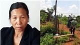 Hàng xóm sát hại 3 bà cháu, chôn xác phi tang trong rẫy cà phê vì mâu thuẫn xin trái bơ
