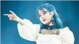 Không quảng bá, IU vượt mặt EXO tiếp tục rinh cúp chiến thắng cho Blueming trên Inkigayo