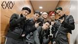 Nhờ thành tích mới của album 'OBSESSION', EXO trở thành nghệ sĩ đầu tiên của SM Ent làm được điều này