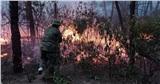 Triệu tập người phụ nữ liên quan đến vụ cháy rừng ở Nghệ An