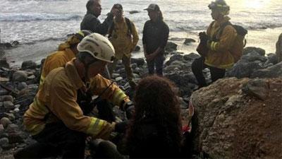 Xe rơi xuống vực, cô gái vẫn sống sót sau 7 ngày nhờ uống nước từ xe