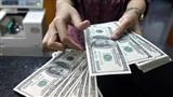 Vụ đổi 100 USD bị phạt ở Cần Thơ: Trả lại tang vật 100 USD, miễn tiền phạt?