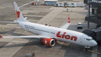 Thông tin cực sốc về chiếc máy bay Indonesia rơi cùng 188 người