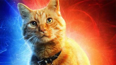 Captain Marvel và con Mèo - Vựa muối mới của Avengers