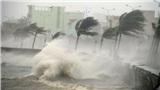 Sáng mai bão số 2 đổ bộ vào đất liền Quảng Ninh - Ninh Bình, đêm nay miền Bắc và miền Trung mưa lớn diện rộng