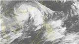 Chiều mai bão số 3 sẽ đổ bộ vào Quảng Ninh, Hà Nội sẽ có mưa rất to