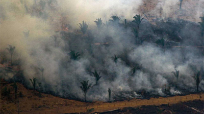 Khu rừng lớn nhất thế giới Amazon cháy suốt 3 tuần, G7 'nhón tay' hỗ trợ 22 triệu USD; Nhà thờ Đức bà Paris nhận quyên góp gần 1 tỷ USD chỉ sau 24h hỏa hoạn