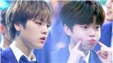 Lee Jin Woo - Nam Do Hyun (X1) nhập học tại trường của Seohyun (SNSD), Song Mino (Winner)