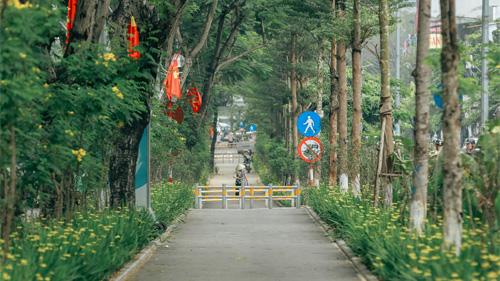 Hà Nội xuất hiện con đường đi bộ tuyệt đẹp ít người biết đến, mộng mơ chẳng kém gì phố Kim Mã huyền thoại