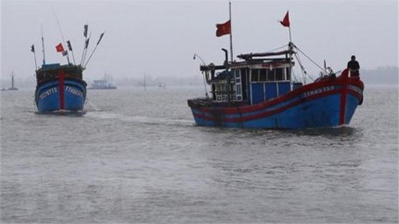 Hai tàu cá gặp nạn khi đang chạy bão số 9, hàng chục thuyền viên mất tích