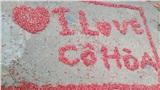 Học sinh tiểu học sáng tạo 'tác phẩm nghệ thuật' từ hoa lộc vừng để dành tặng giáo viên chủ nhiệm
