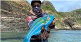 Sự thật bất ngờ về con cá màu sắc gây sốt ở Nhật Bản