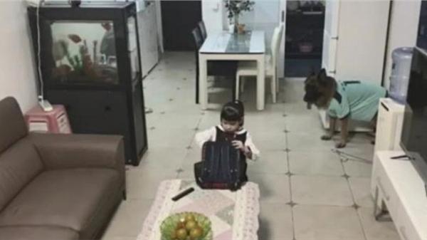 Chú chó thông minh 'lập mưu' ép bé gái làm bài tập bằng được trong khi bố mẹ đi vắng khiến dân mạng phục lăn