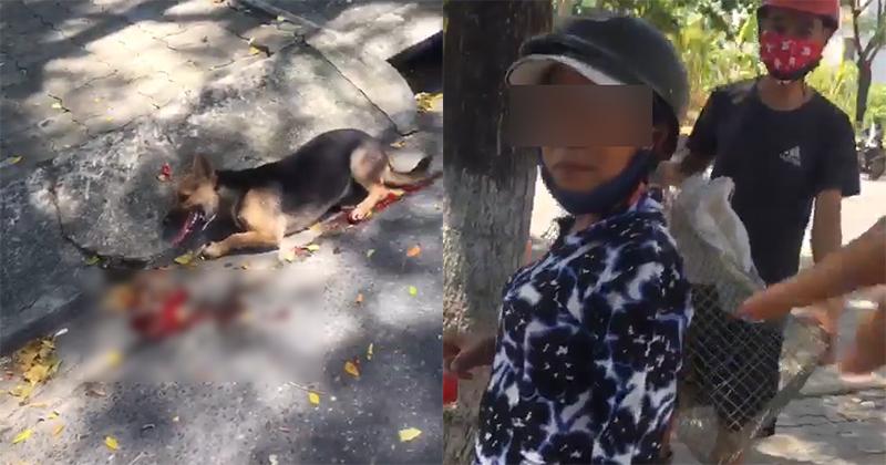 Phẫn nộ đoạn clip người phụ nữ đi xe máy kéo lê chú chó nhỏđến chảy máu ở Đà Nẵng