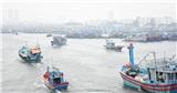 Tàu, thuyền Đà Nẵng khẩn trương vào bờ ẩn trú trước giờ bão số 5 đổ bộ