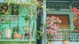 Ngắm ngôi nhà nhỏ tại An Giang được xuýt xoa 'đẹp như tranh'