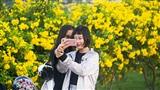 Điểm check-in mới toanh cho giới trẻ Sài Gòn: Vườn hoa chuông vàng đẹp miễn chê