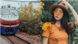 Địa điểm check-in mới toanh: Mùa hoa huỳnh liên rực rỡ nở dọc đường ray xe lửa Sài Gòn