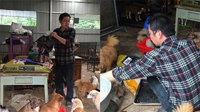 Người đàn ông cưu mang 300 con chó tới khánh kiệt, bố mẹ nghỉ hưu cũng phải nai lưng đi làm trả nợ con