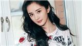 Tổng quan tuần mới 9/12 - 15/12 của 12 cung Hoàng đạo: Xui xẻo rời xa Kim Ngưu, Thiên Bình muốn 'lặng lẽ yêu'
