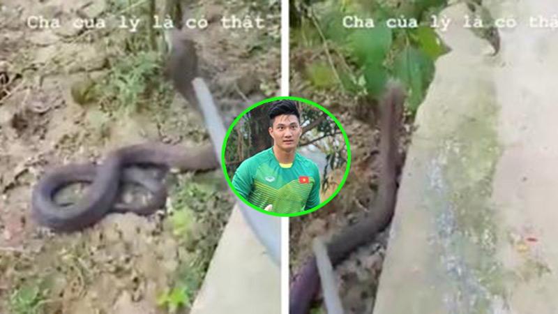 Cựu thủ môn U23 Việt Nam chia sẻ cảnh vây bắt 'bé Na' khi đang 'dạo chơi' trong vườn nhà khiến người xem nổi da gà