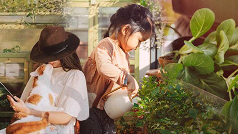 Cuộc sống êm đềm của đôi vợ chồng trẻ người Việt ở Đức: Dù sống giữa vùng dịch vẫn bình thản trồng rau, làm bánh