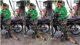 Góc đáng yêu: Bác tài xế không dám cử động chân để cho chú cún gối đầu ngủ