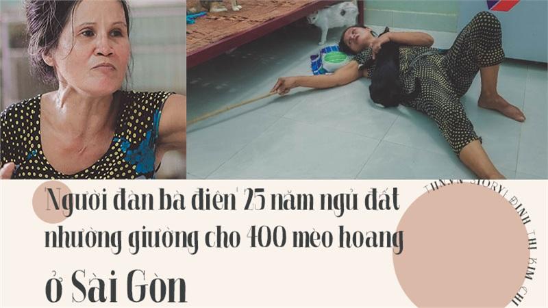 'Người đàn bà điên' 25 năm ngủ đất nhường giường cho 400 mèo hoang ở Sài Gòn