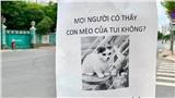 In giấy dán cột điện vờ như mèo nhà mình bị lạc, 'chủ thớt' nhận về chỉ trích vì trò đùa làm mất mỹ quan đường phố