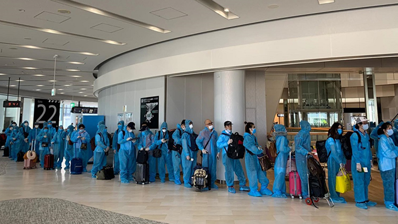 Tiếp tục đưa hơn 350 công dân Việt Nam từ Nhật Bản về nước