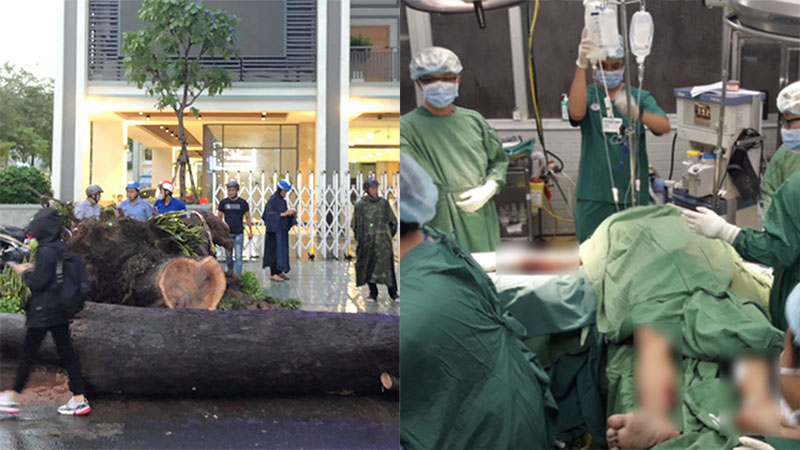 Cứu bệnh nhân bị cây cổ thụ đè trúng người, tiên lượng giữ lại được 2 cánh tay