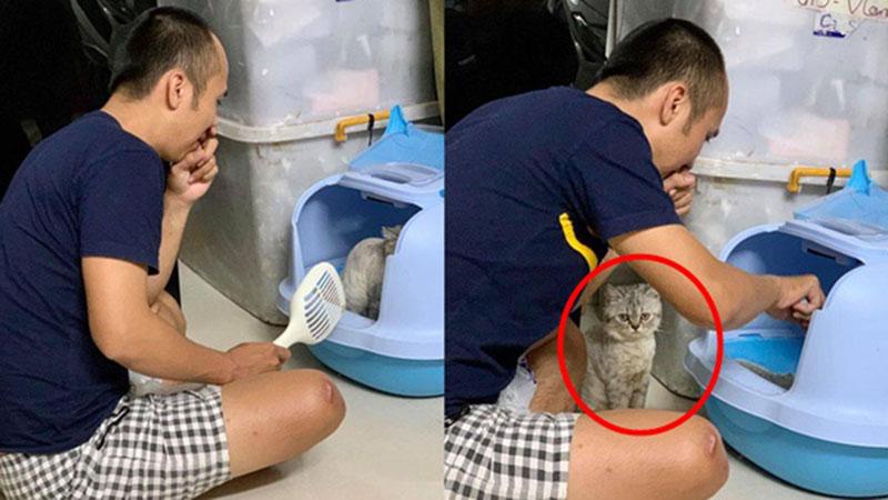 Thấy chồng bịt mũi ngồi canh lồng mèo, biết lý do thực sự, vợ không thể nhịn cười